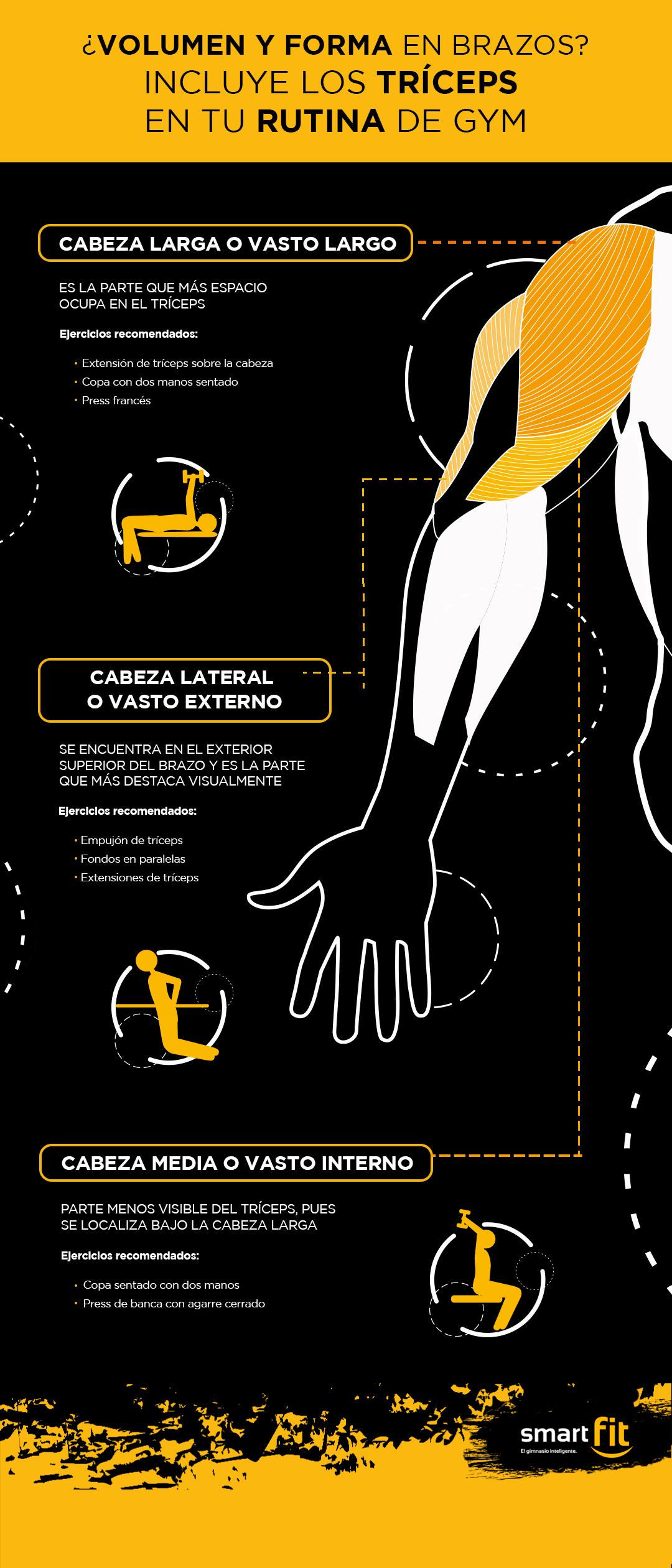 rutina de tríceps infografía