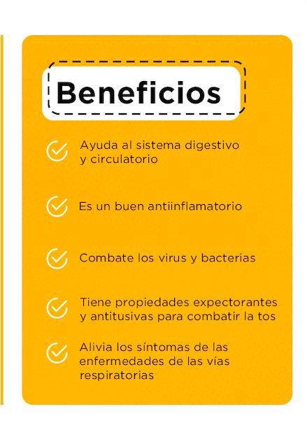 alimentos para mejorar el sistema inmune jengibre 02