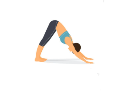 Rutinas de Yoga Perro